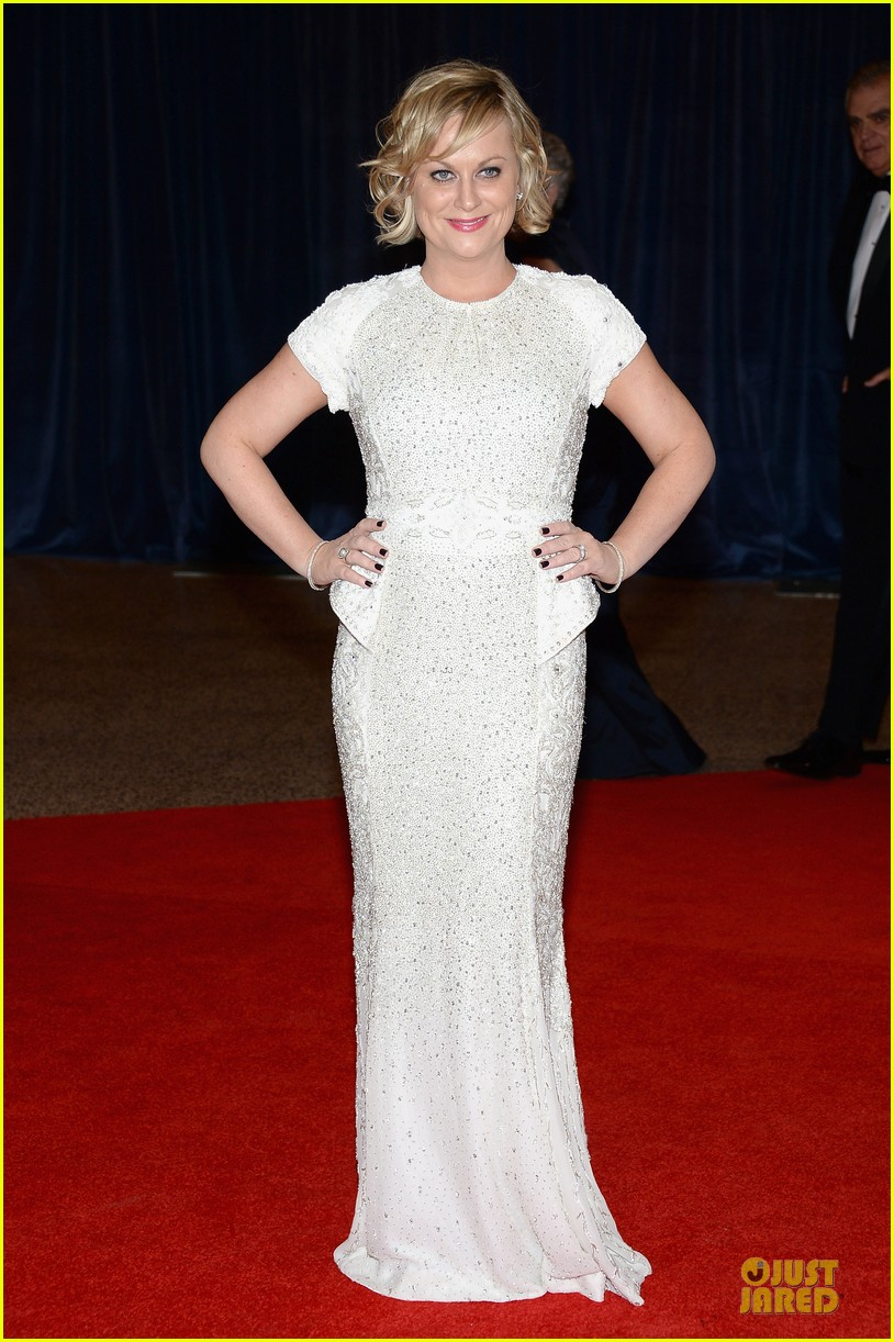 amy poehler white house correspondents dinner 2013 red carpet 032859478