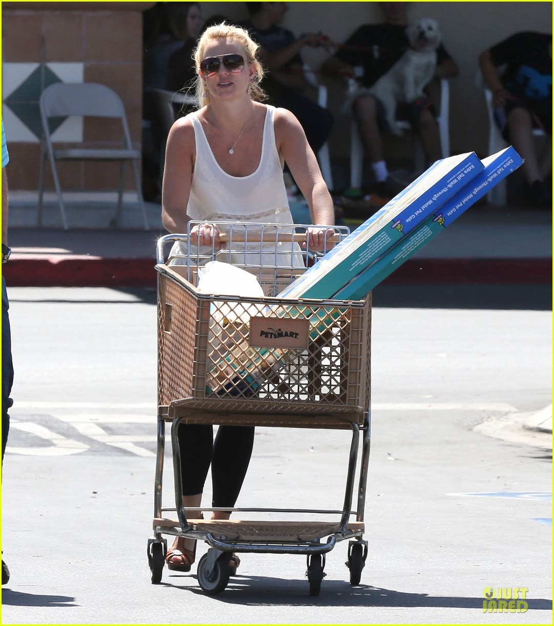 britney spears petsmart pet shopping 13