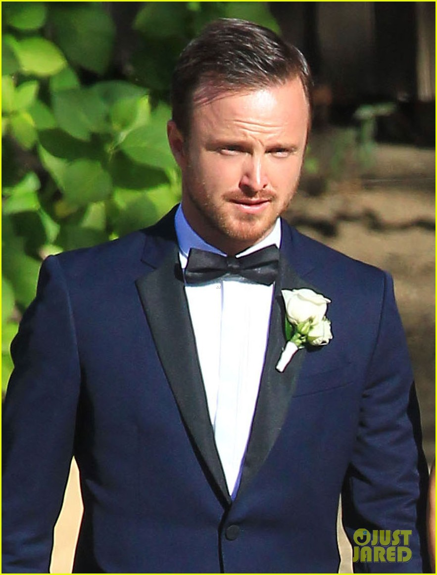aaron paul lauren parkesian wedding photos 042879083