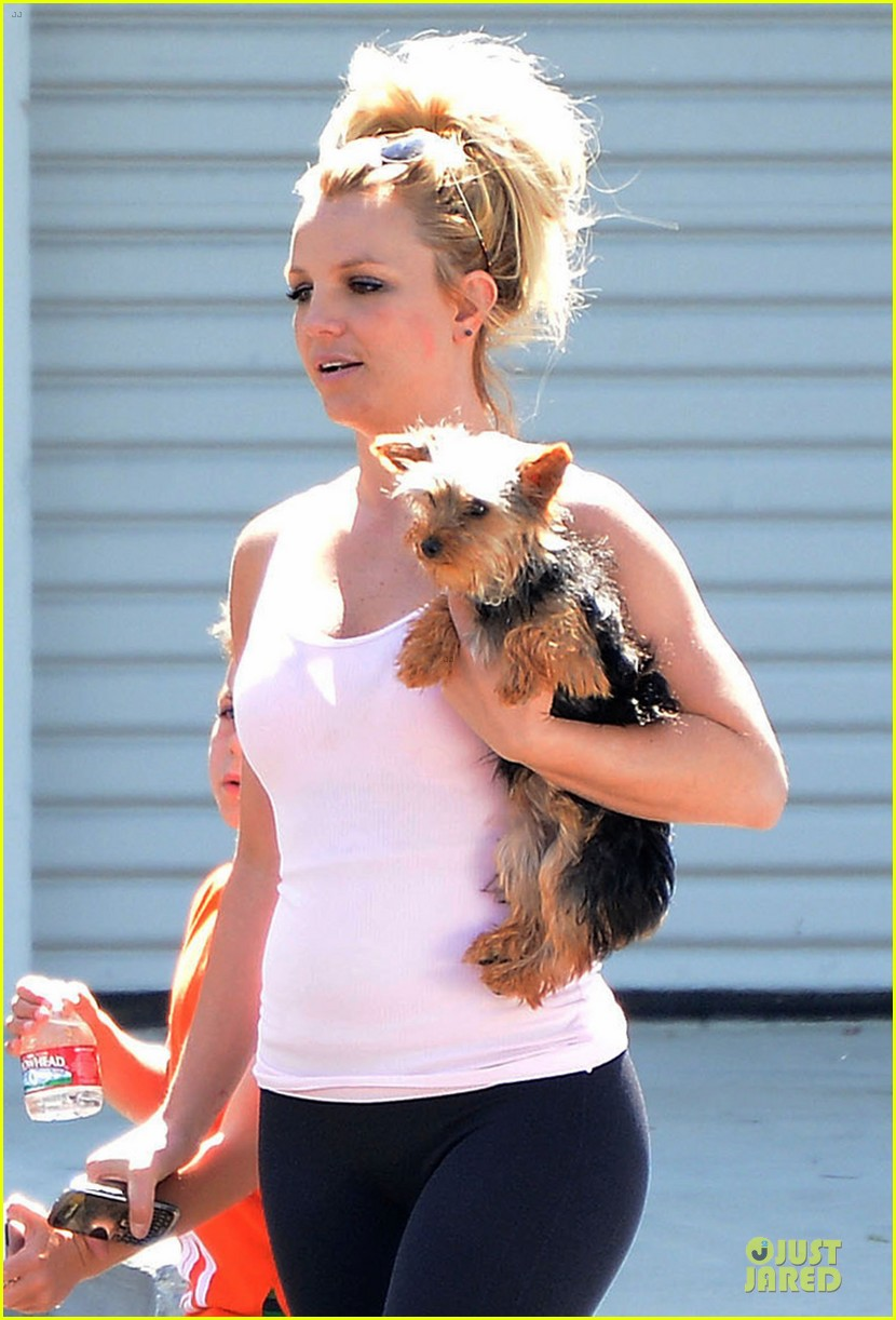 britney spears demi lovato moms are close now 062869725