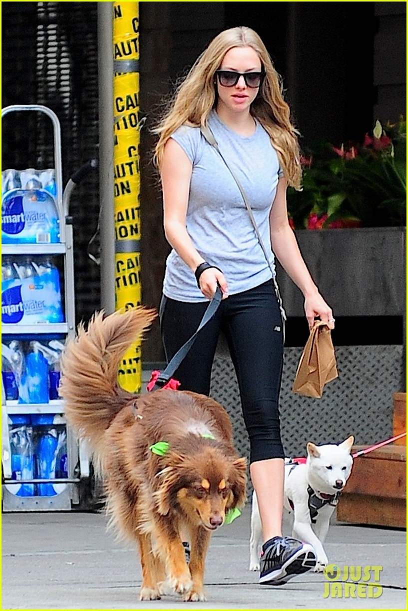 amanda seyfried immortality for her dog finn 042951320