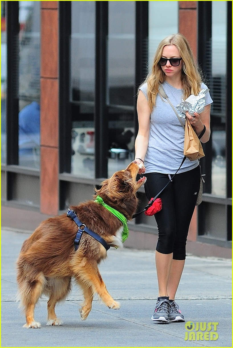 amanda seyfried immortality for her dog finn 132951329