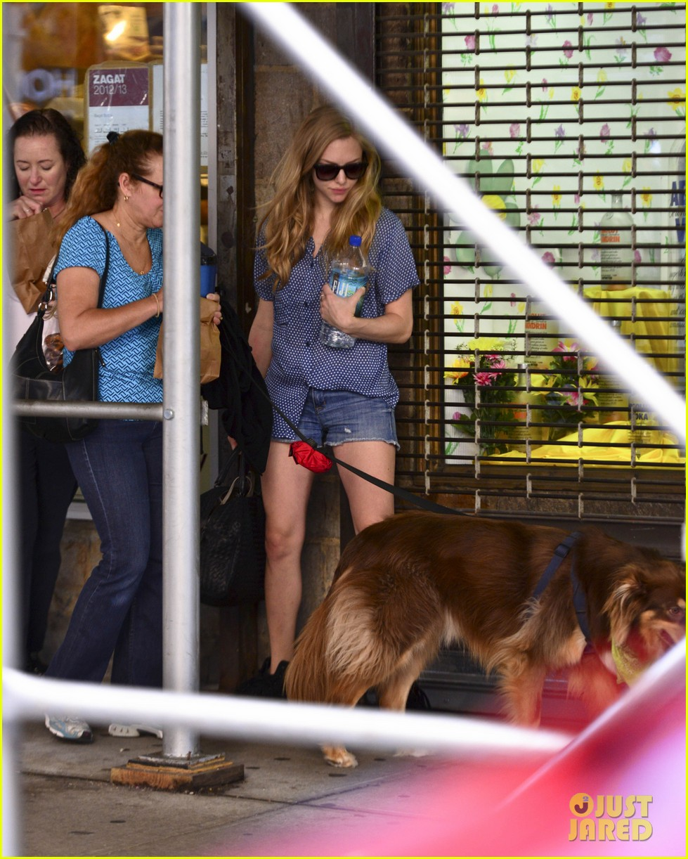 amanda seyfrieds dog finn jumps kisses justin long 18