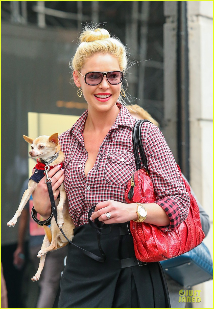 katherine heigl josh kelley hold hands after lunch 042966311