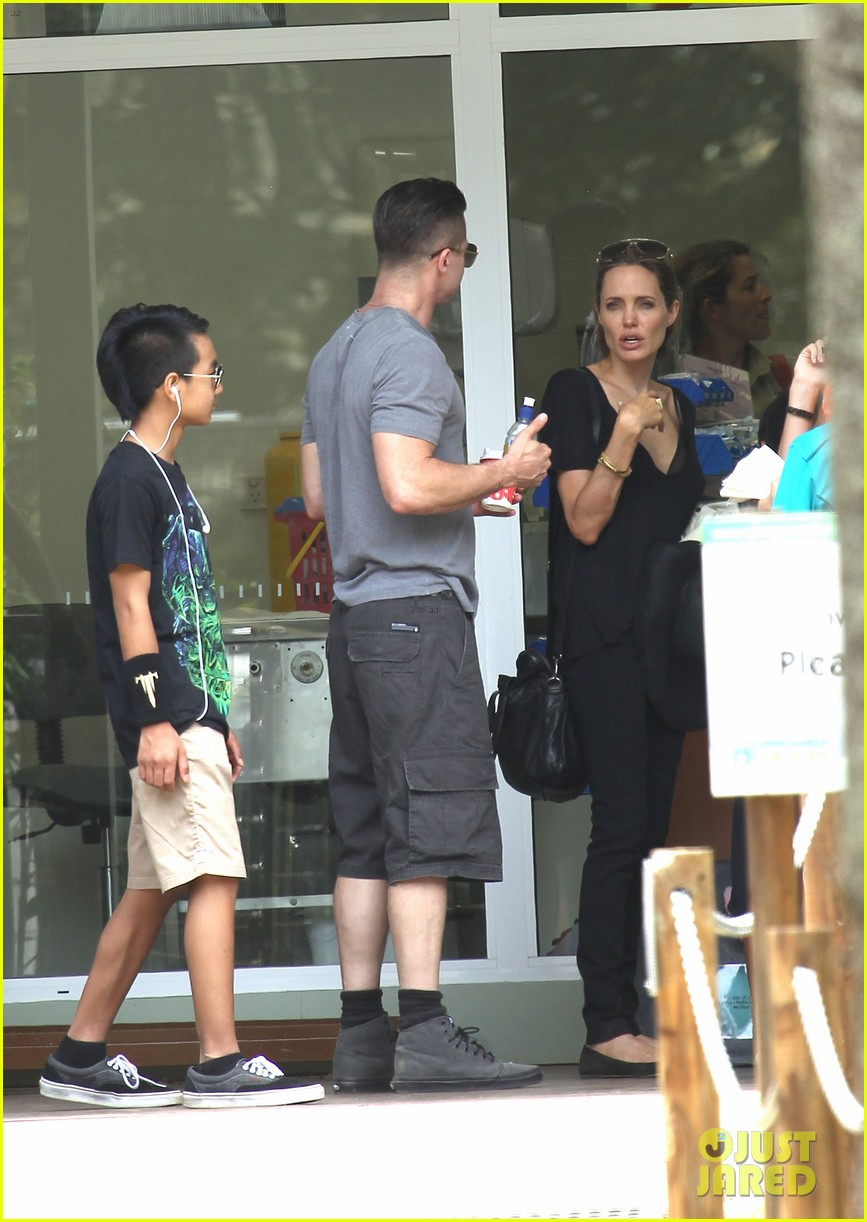 angelina jolie brad pitt visit the zoo with all six kids 27