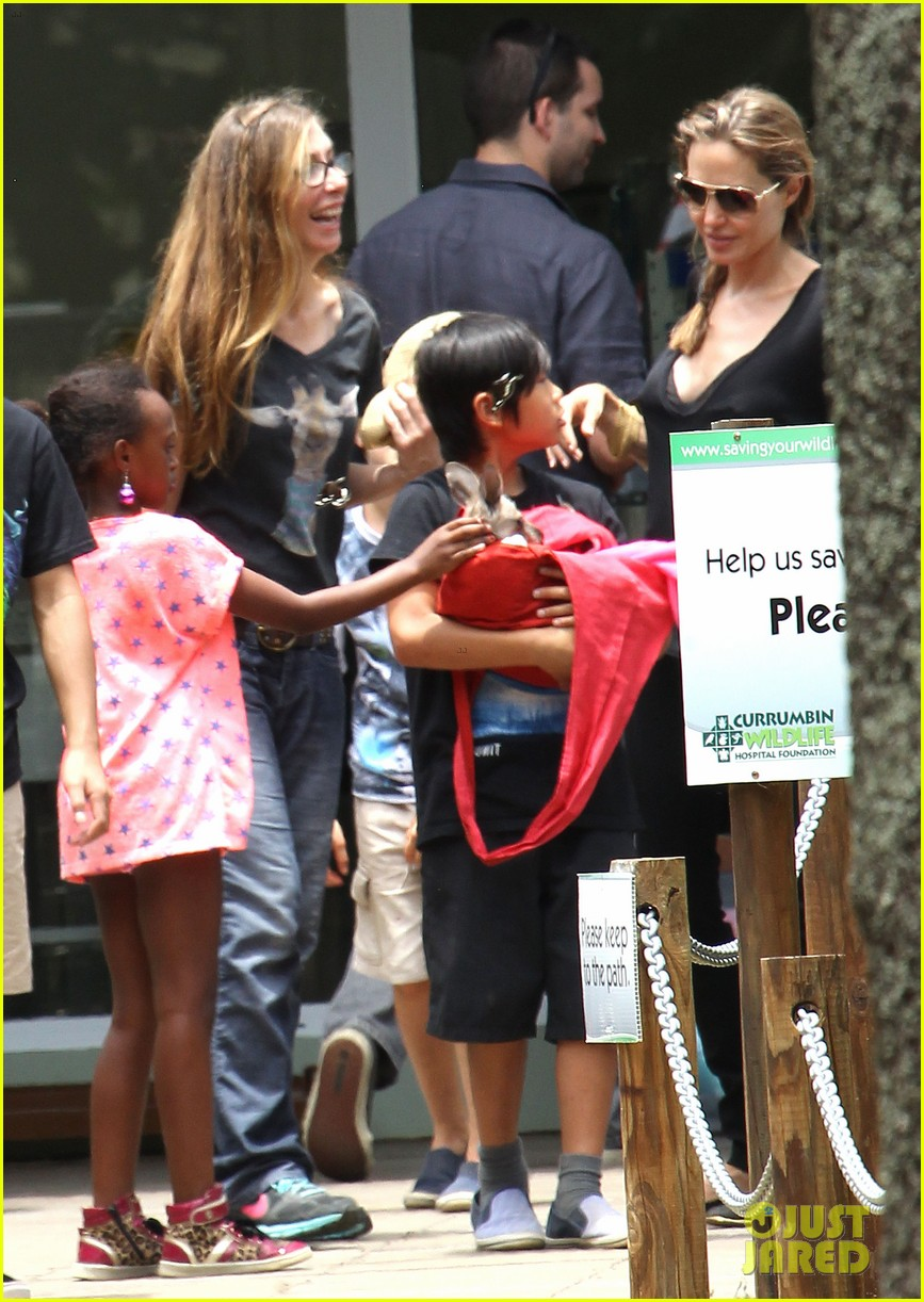 angelina jolie brad pitt visit the zoo with all six kids 51