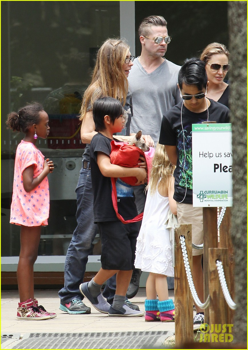 angelina jolie brad pitt visit the zoo with all six kids 58