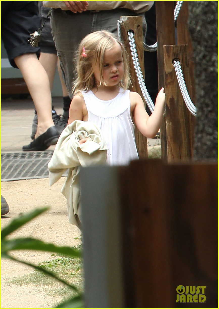 angelina jolie brad pitt visit the zoo with all six kids 723018308