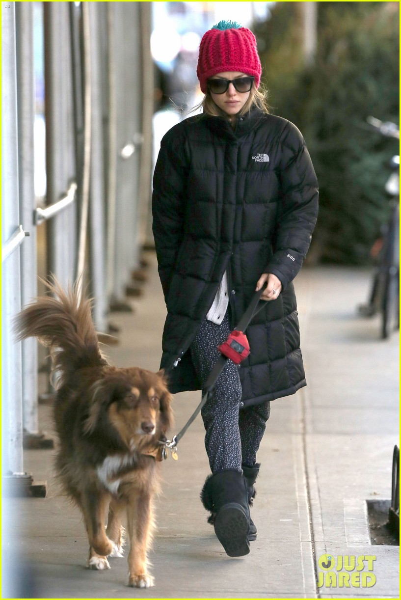 amanda seyfried monday morning dog walk with finn 02