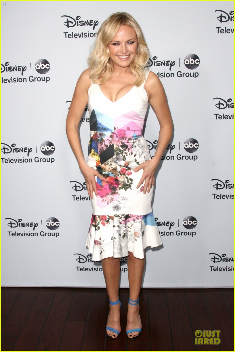malin akerman conne britton abc winter tca party 063034384