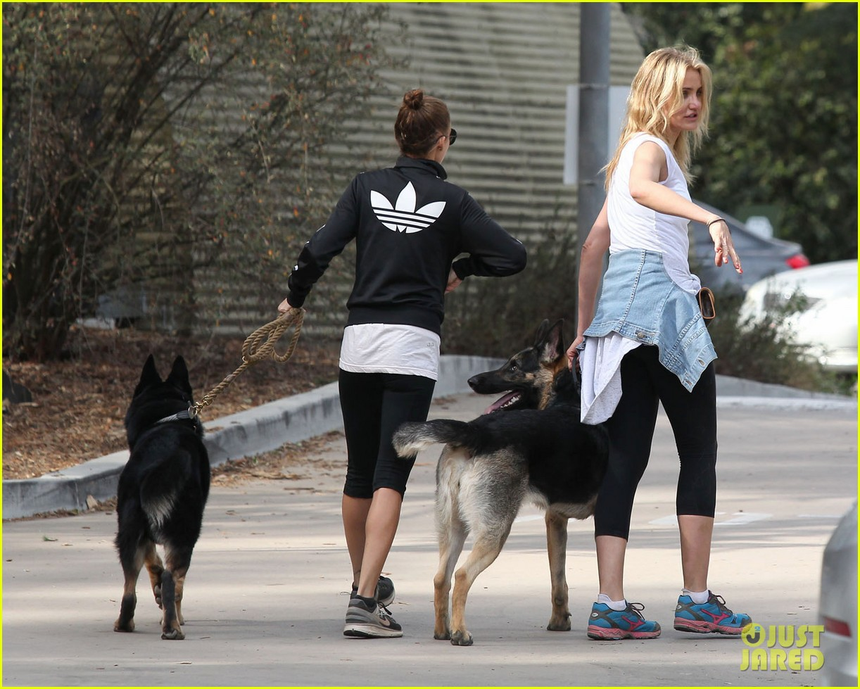cameron diaz nicole richie walk their dogs together 10