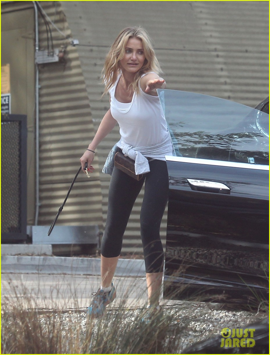 cameron diaz nicole richie walk their dogs together 15