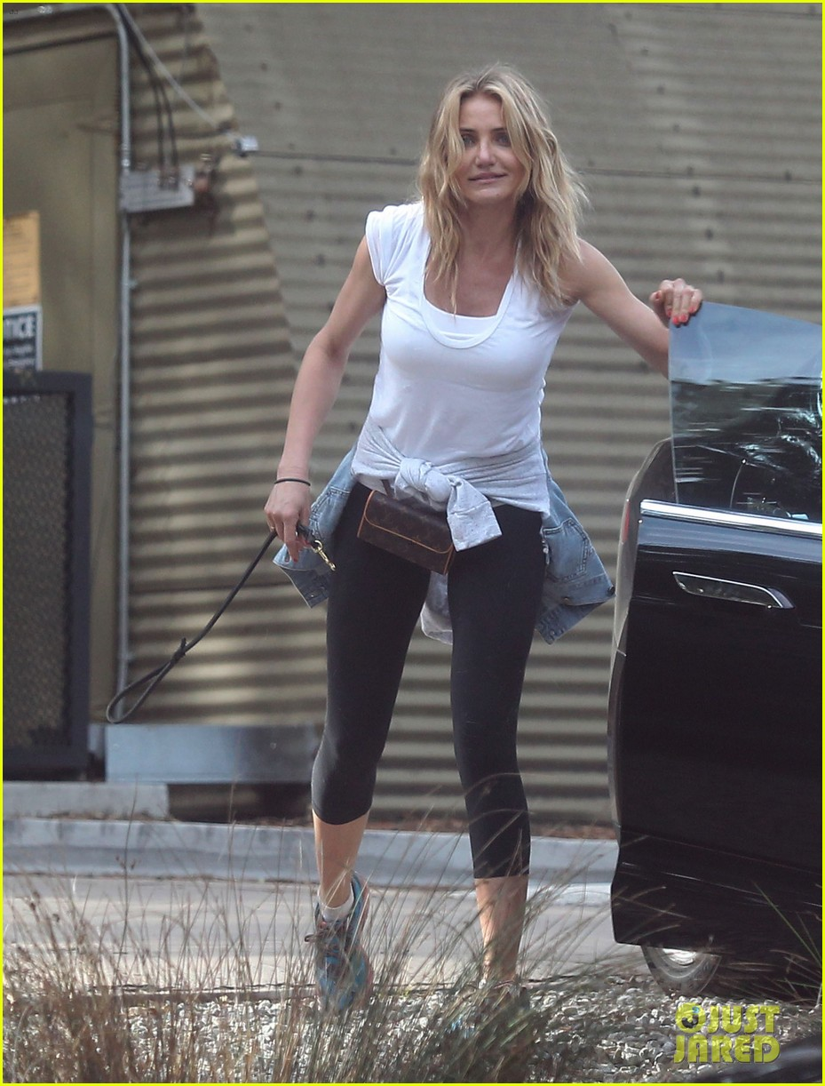 cameron diaz nicole richie walk their dogs together 16