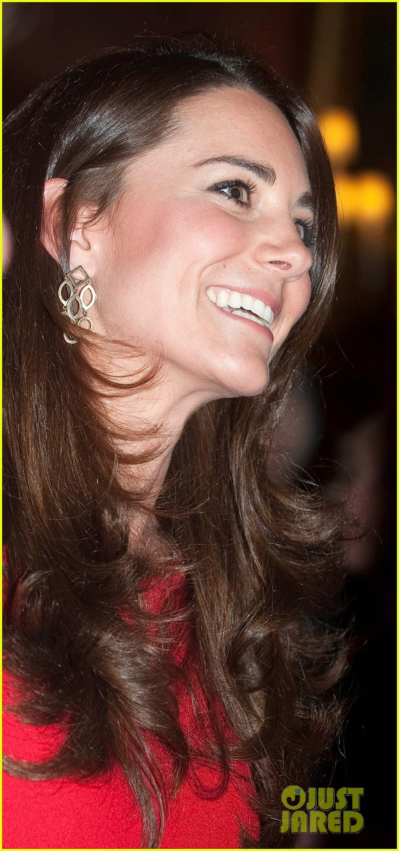 kate middleton recycles alexander mcqueen dress for arts reception 04