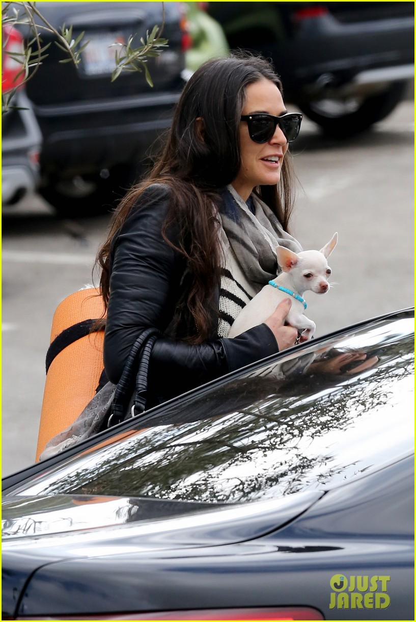 demi moore takes her tiny dog to yoga class 15