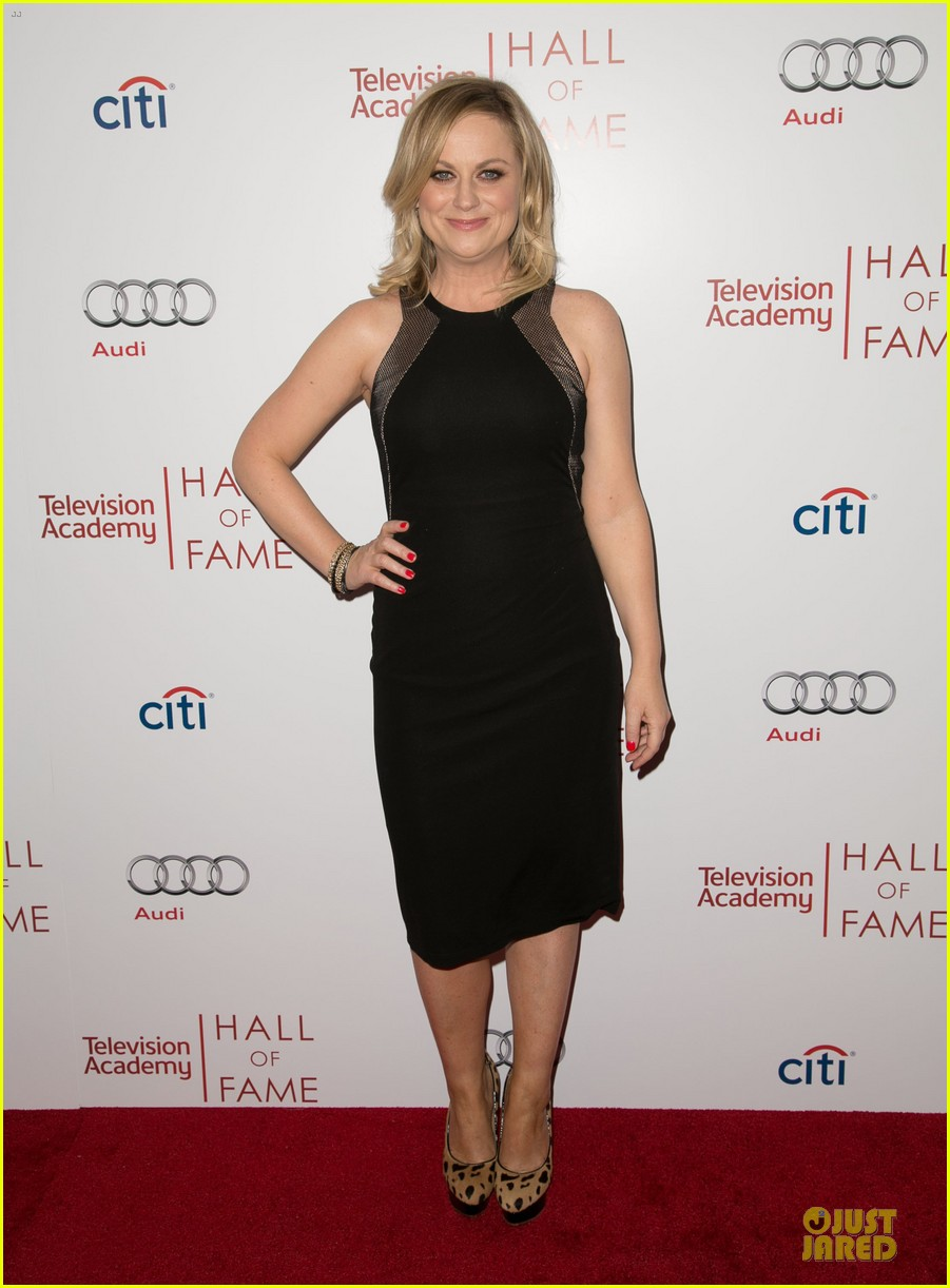 amy poehler julia louis dreyfus doll up for hall of fame gala 01