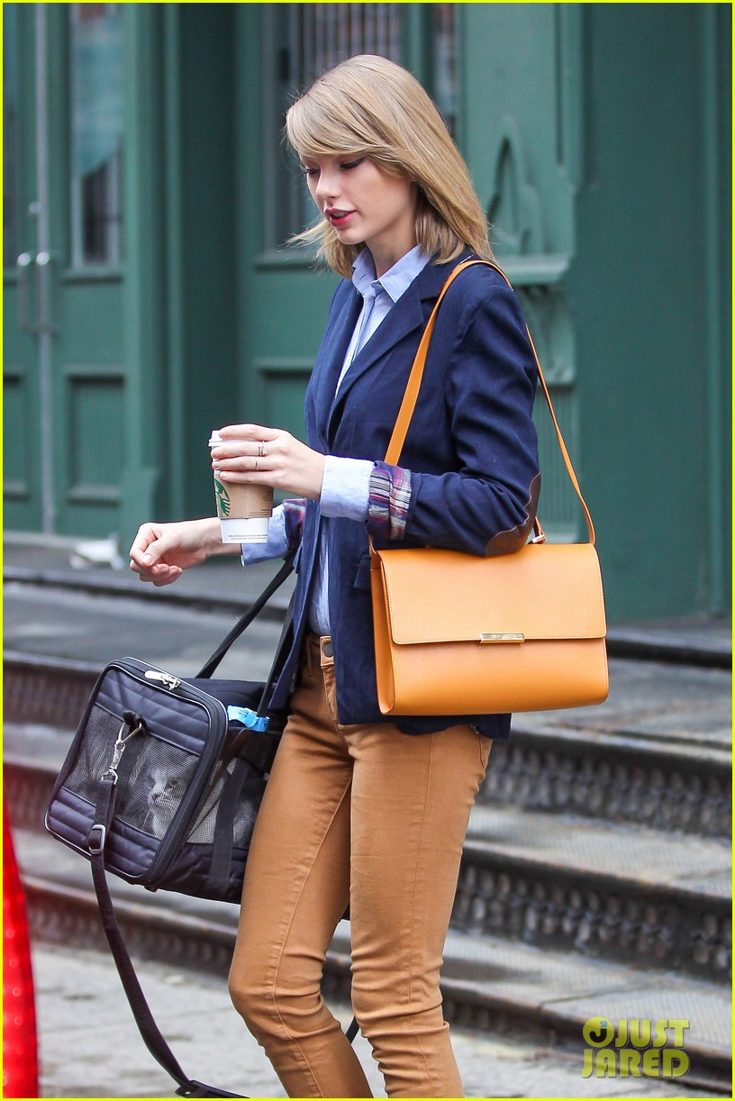 taylor swift brings her cat meredith around nyc in travel carrier 15