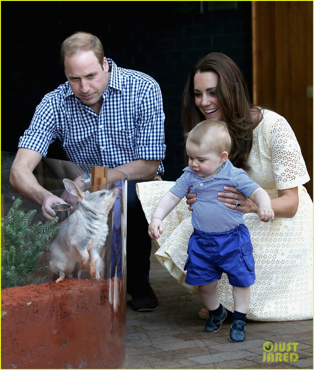 prince george goes to the zoo kate middleton prince william 013095502
