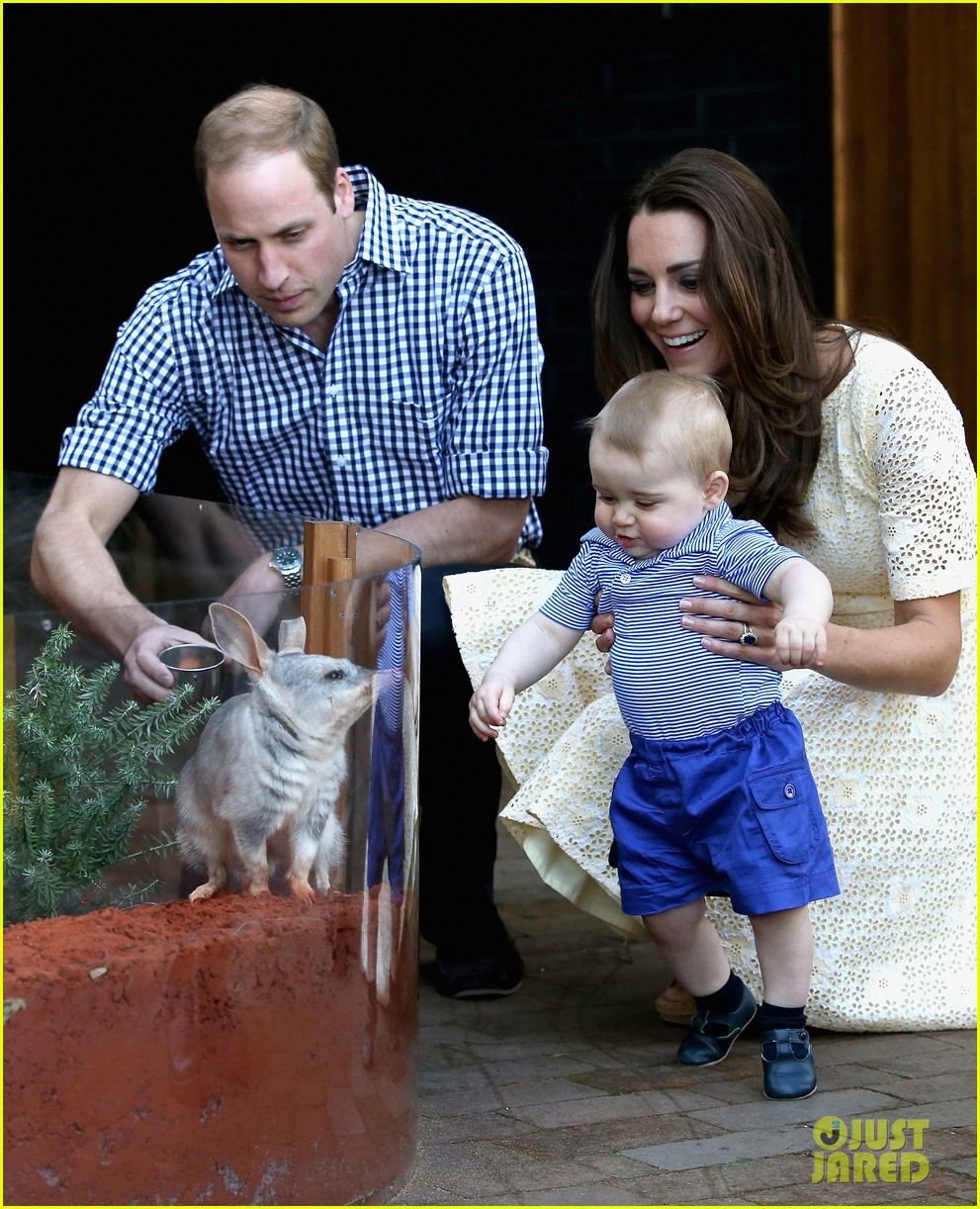 prince george goes to the zoo kate middleton prince william 13