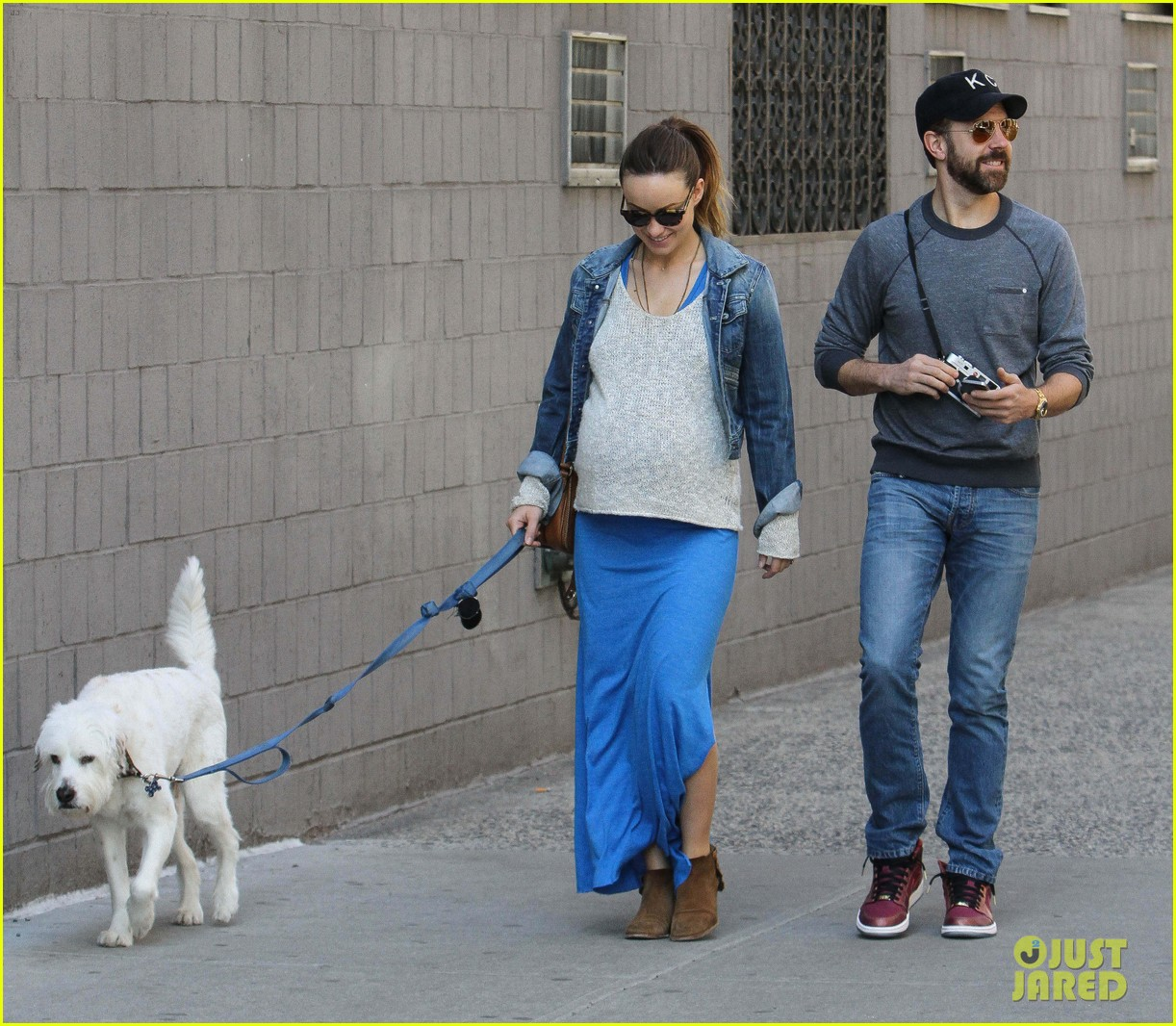 olivia wilde growing baby bump dog walk 173092191
