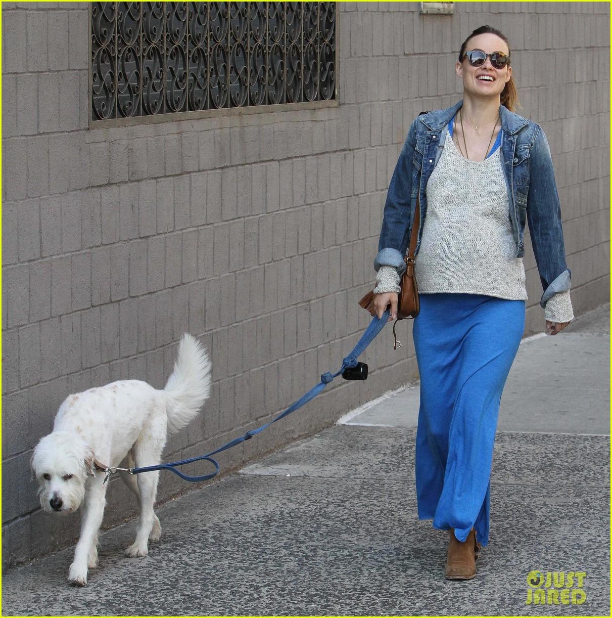 olivia wilde growing baby bump dog walk 233092197