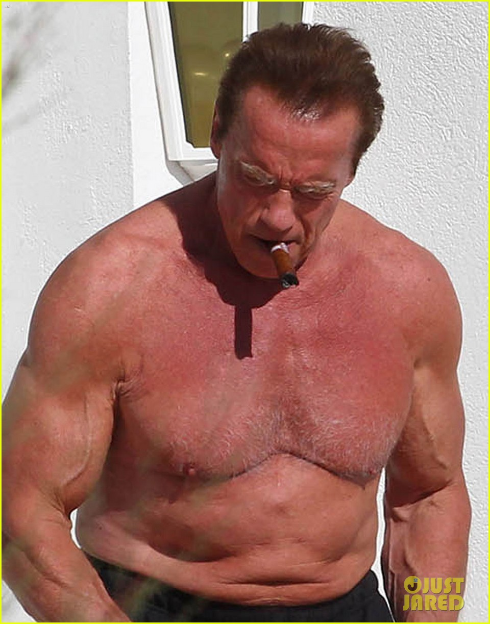 arnold schwarzenegger shirtless buff cannes 023117246