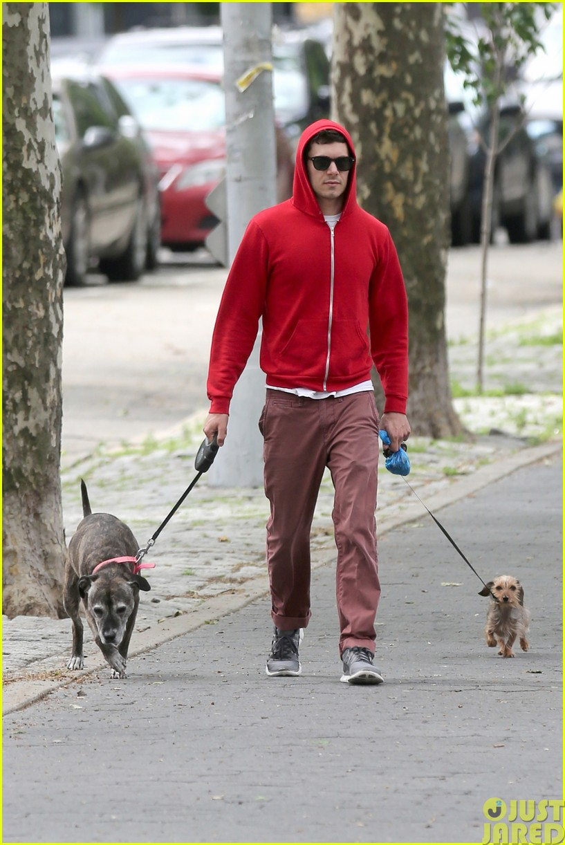 adam brody walks the dogs in his favorite sweatshirt01