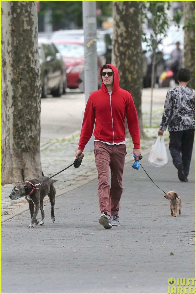 adam brody walks the dogs in his favorite sweatshirt083121665