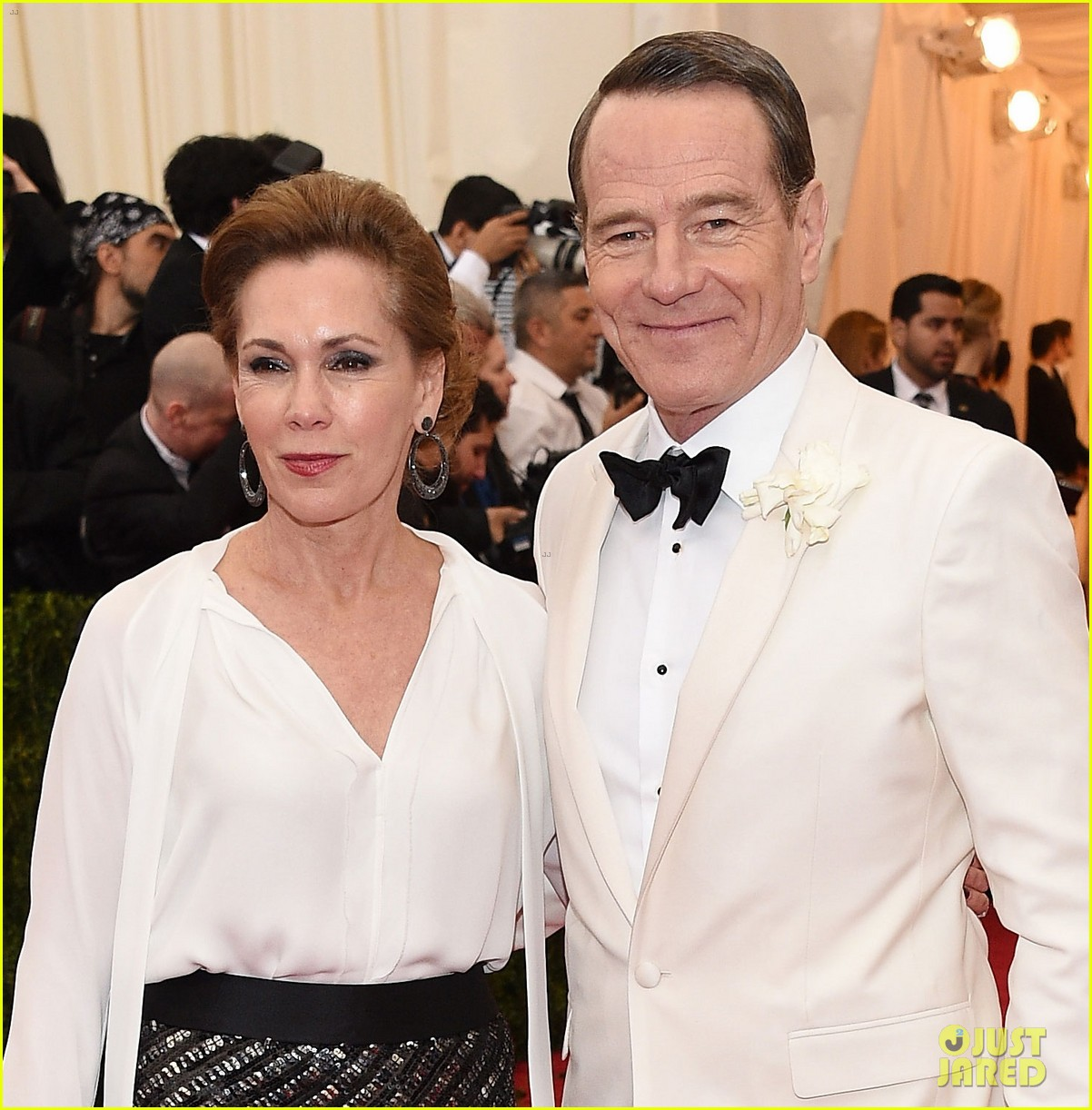 bryan cranston met ball 2014 red carpet 01