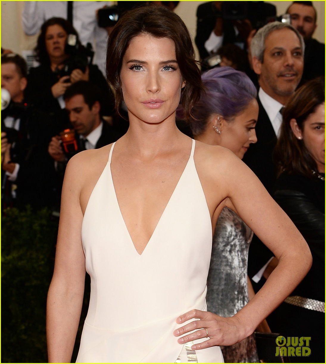 cobie smulders shines on met ball 2014 red carpet 033106581