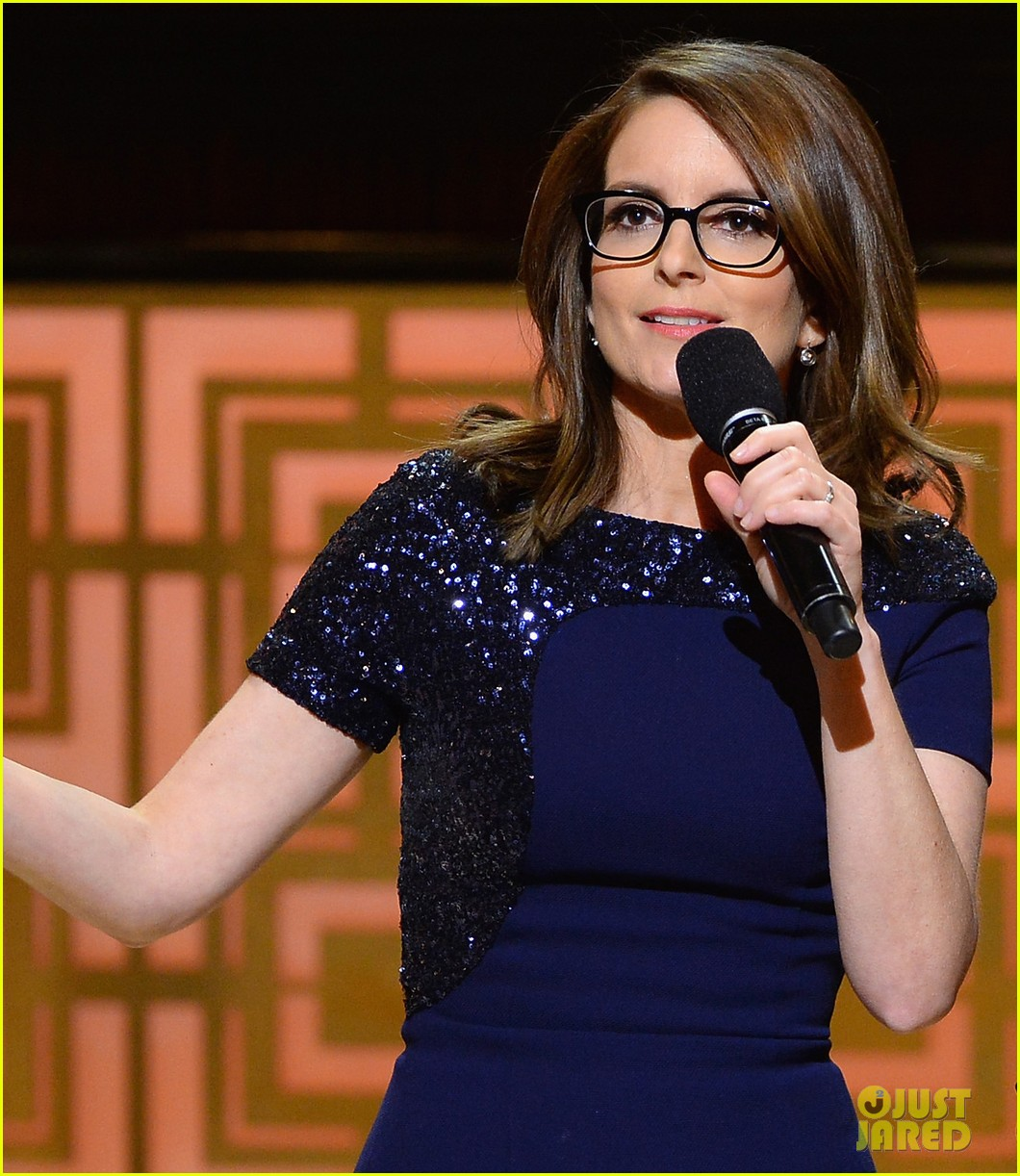 tina fey amy poehler reunite on stage for don rickles one night only all star comedy tribute 10