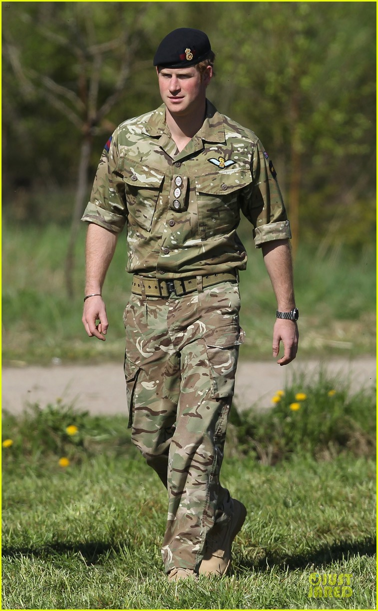 prince harry charm us on two day estonia visit 013115708