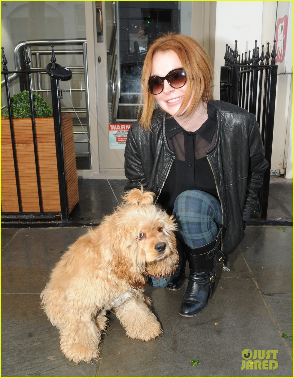 lindsay lohan adorable dog london 14