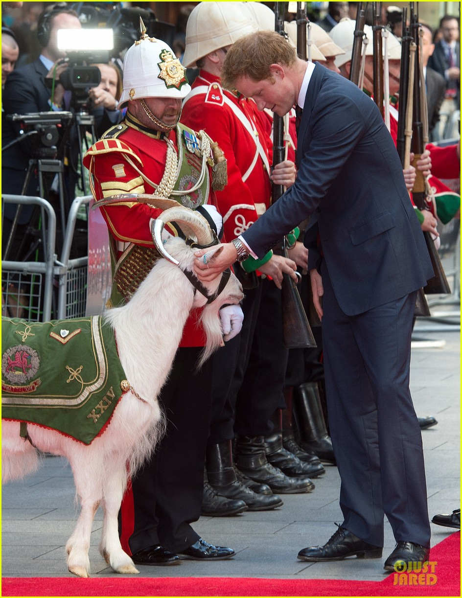 prince harry interaction with goat melt your heart 113132684