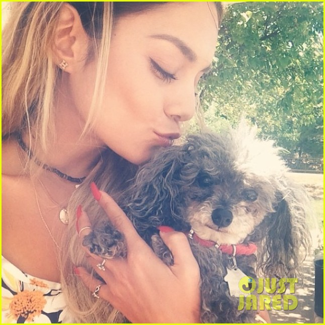 vanessa hudgens shadow reunite adorable pic 04