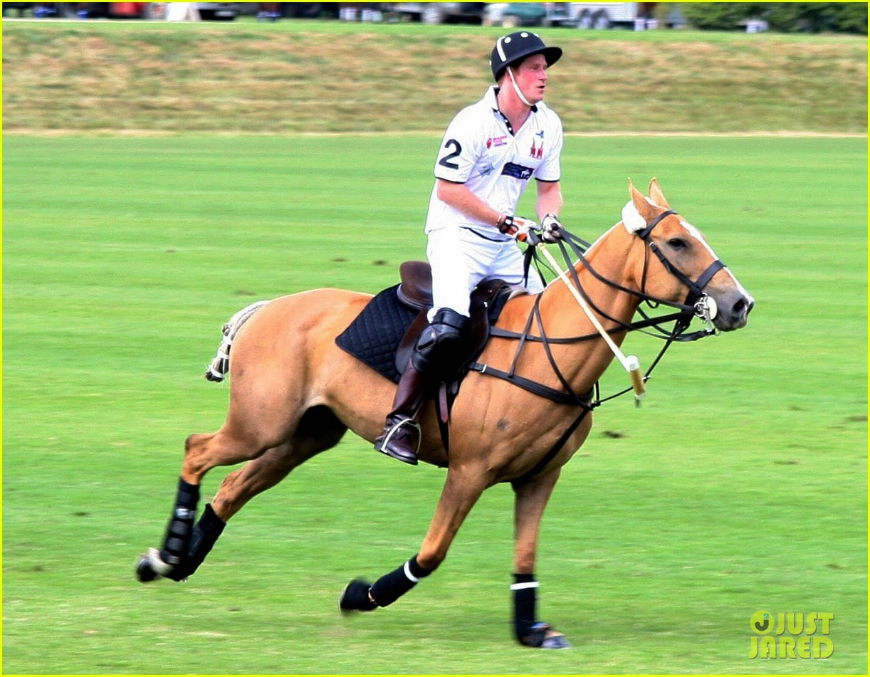 prince harry prince william make it a royal affair at polo match 033141410
