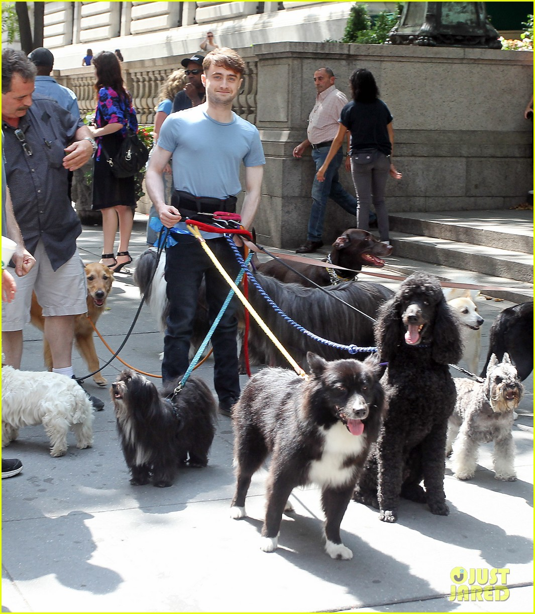 daniel radcliffe dog walker trainwreck nyc set 063147553
