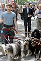 daniel radcliffe dog walker trainwreck nyc set 18