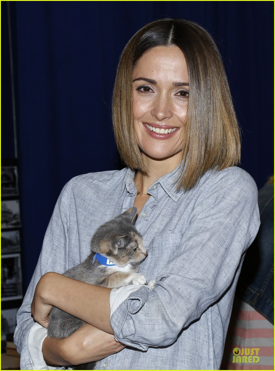 rose byrne looks for the right kittens 04