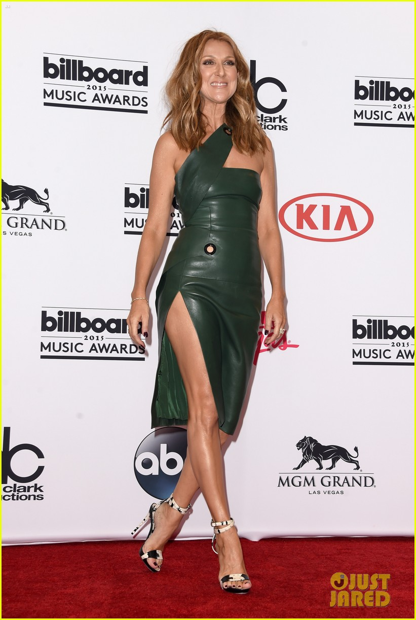 Celine dion shows a ton of leg at billboard music awards 2015 photo