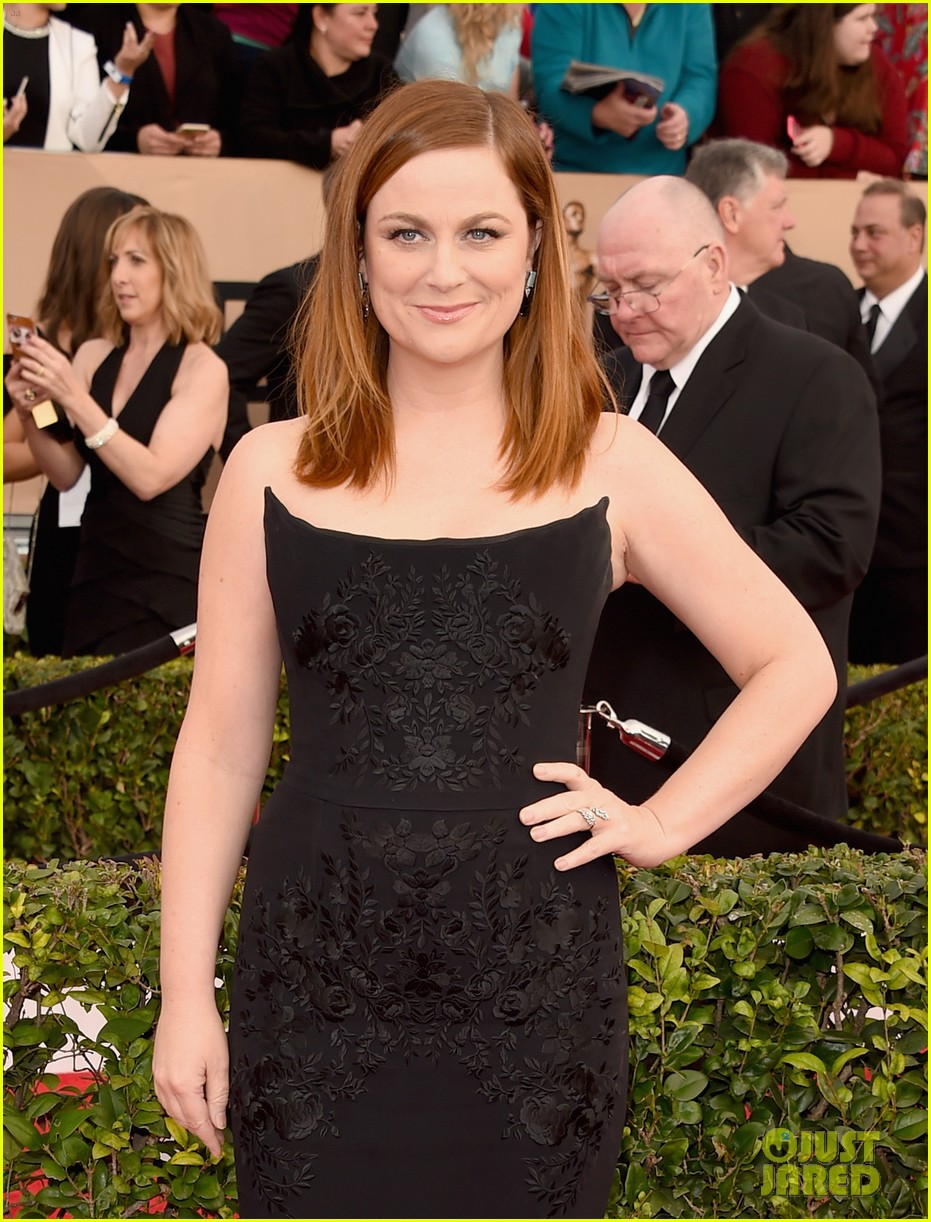 Amy Poehler's SAG Awards 2016 Look Is So Sleek!: Photo ...