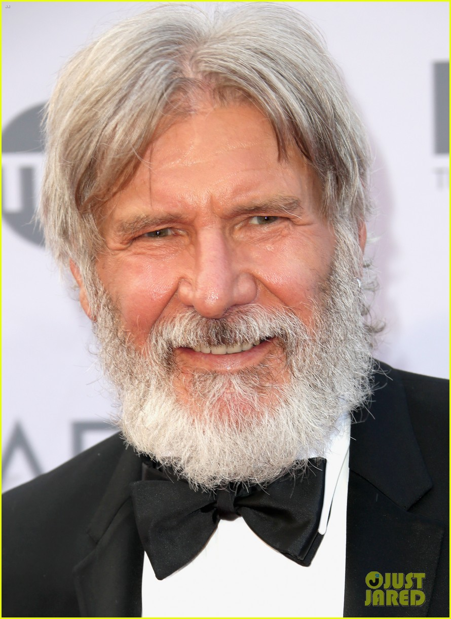 Harrison ford beard the image kid has it for The harrison