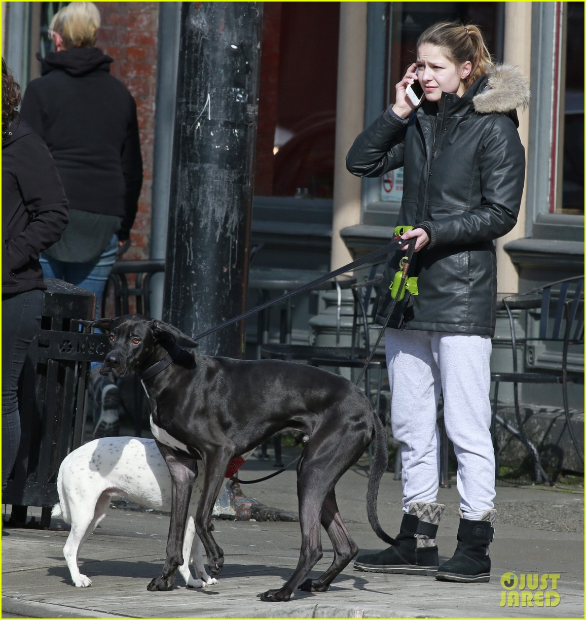 Supergirl S Melissa Benoist Walks Chris Wood S Dog In
