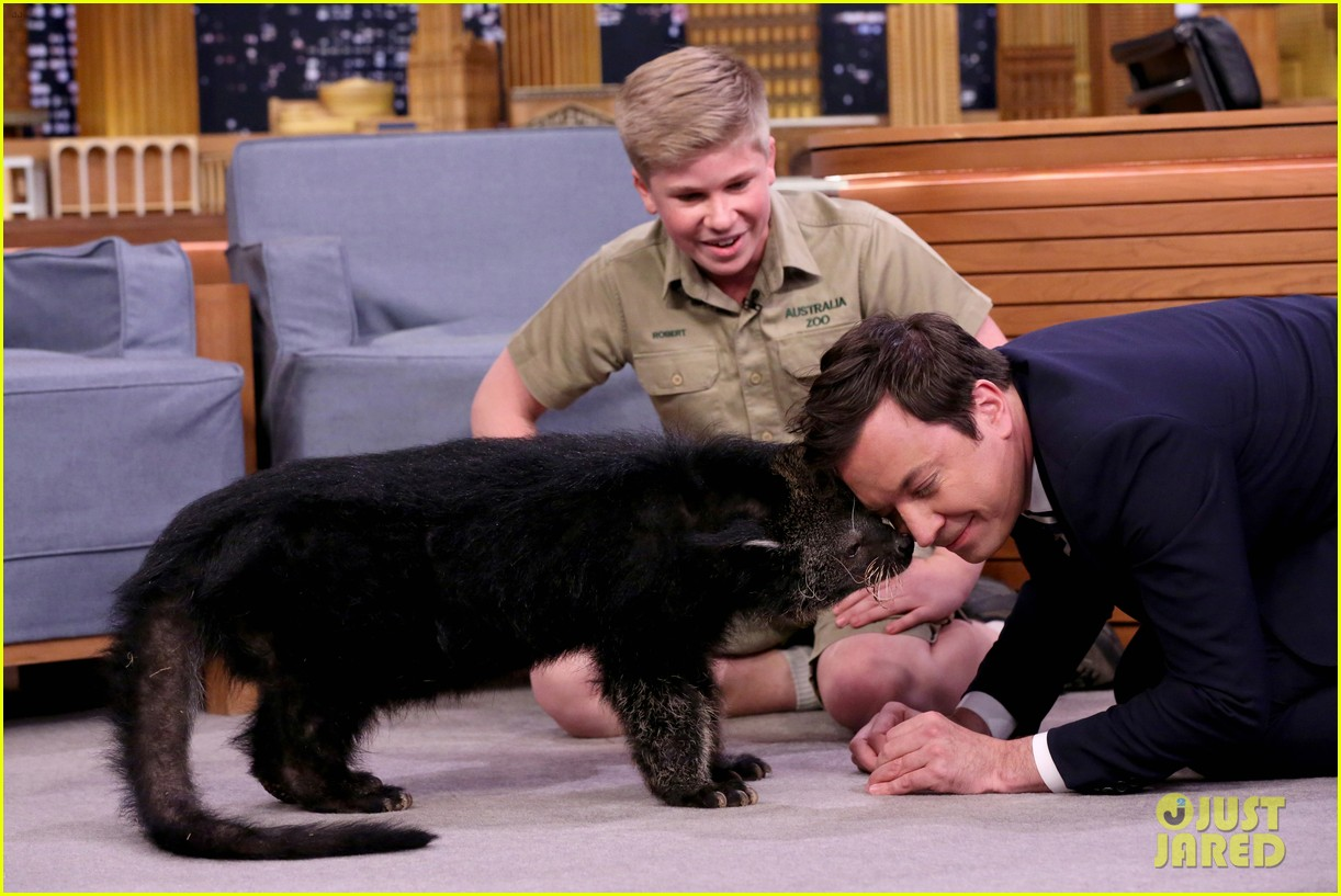 steve irwin son robert makes his return to the tonight show 023888899