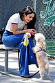 vanessa hudgens hits the beach with pup darla 02