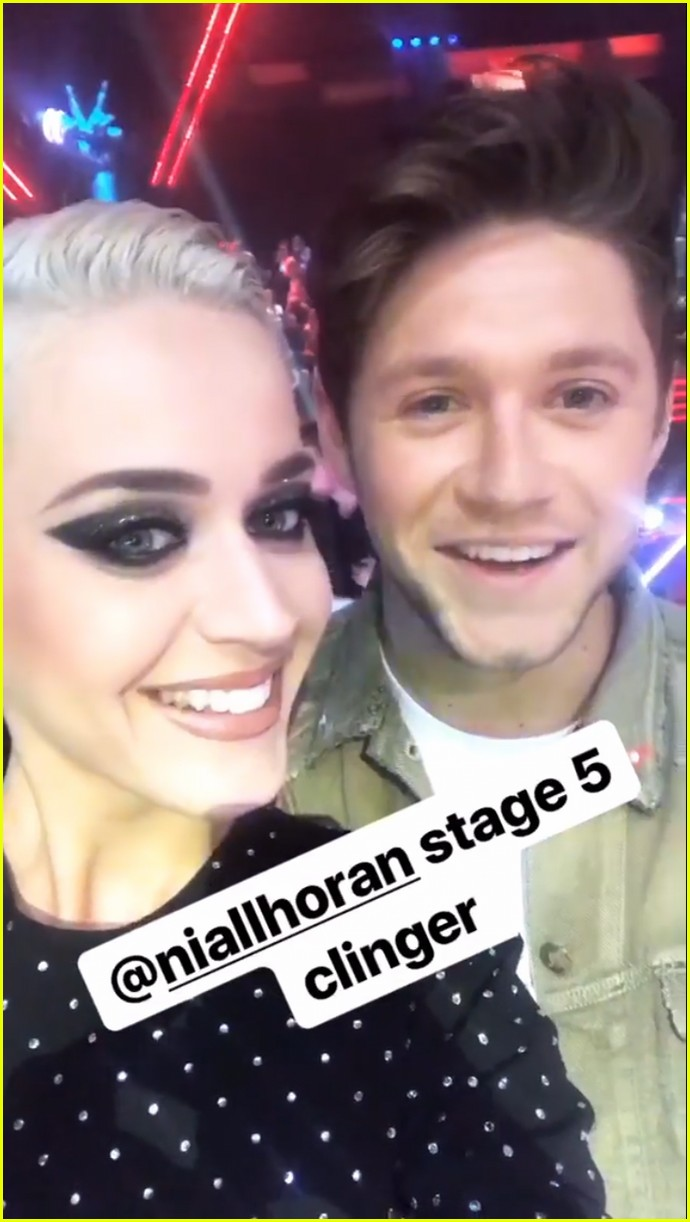 katy perry calls niall horan stage five clinger 023922611