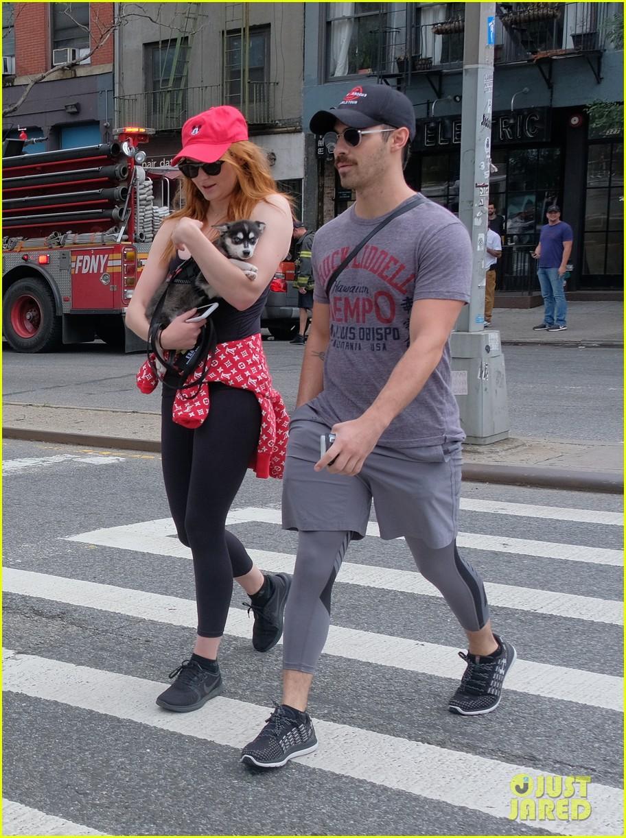 joe jonas and sophie turner adorably walk their new dog together 183952255