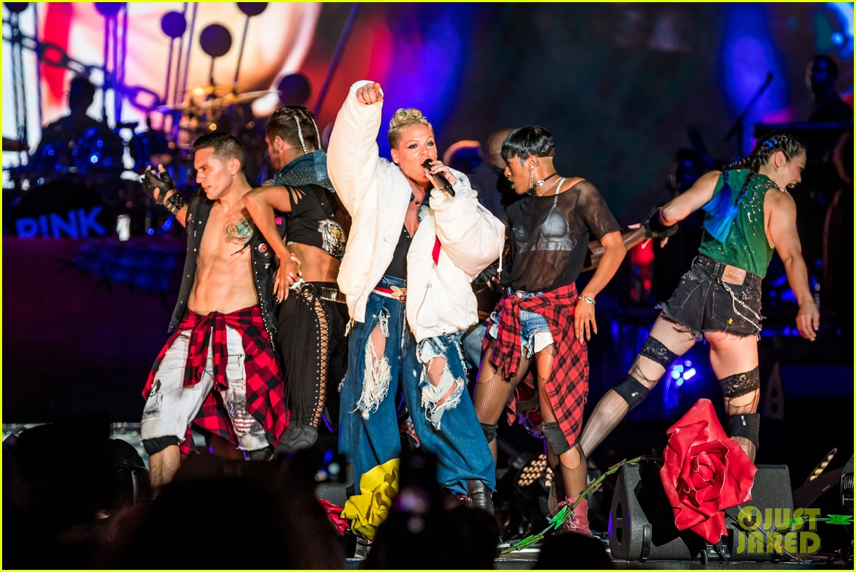 pink brings daughter willow to kaaboo music fest 033960680