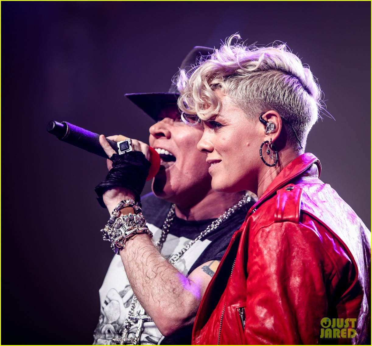 pink makes surprise appearance at guns n roses concert 023971625