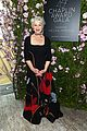 Photo 20 of Helen Mirren is Supported by Famous Friends at Chaplin Award Gala 2018!